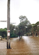 Moora Flood 1